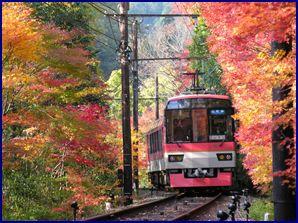 秋の貴船お散歩 その1 叡山電鉄きらら号