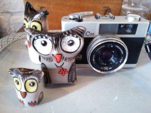 cafe owl11a